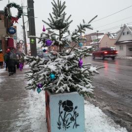 Ta-da! A festive tree! Looking good!