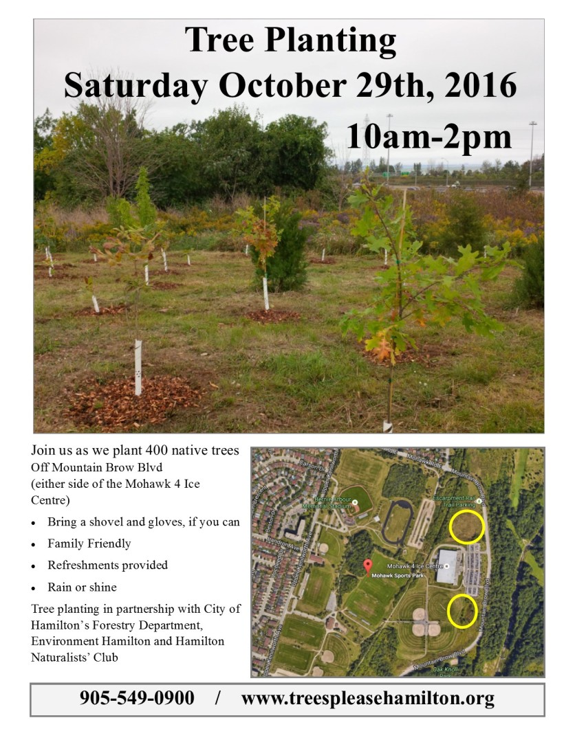 sat-oct-29th-tree-planting-poster