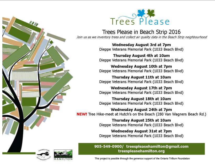 TP Beach Strip Aug 2016