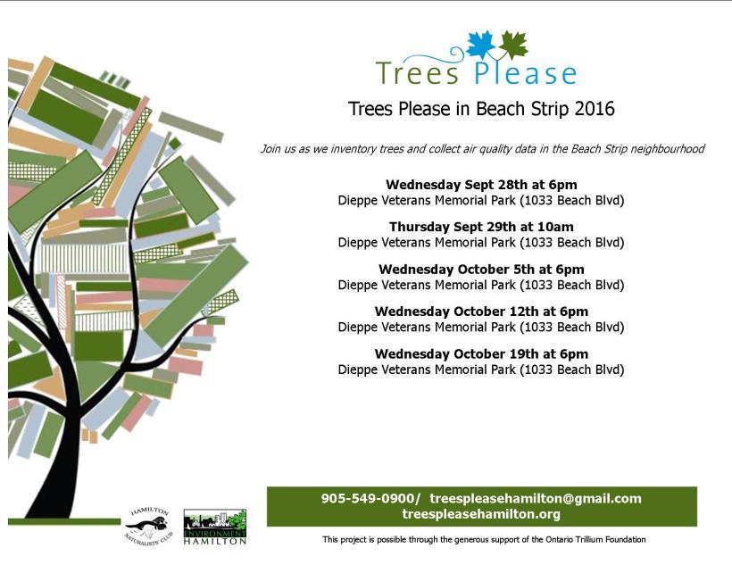 tp-beach-strip-oct-2016