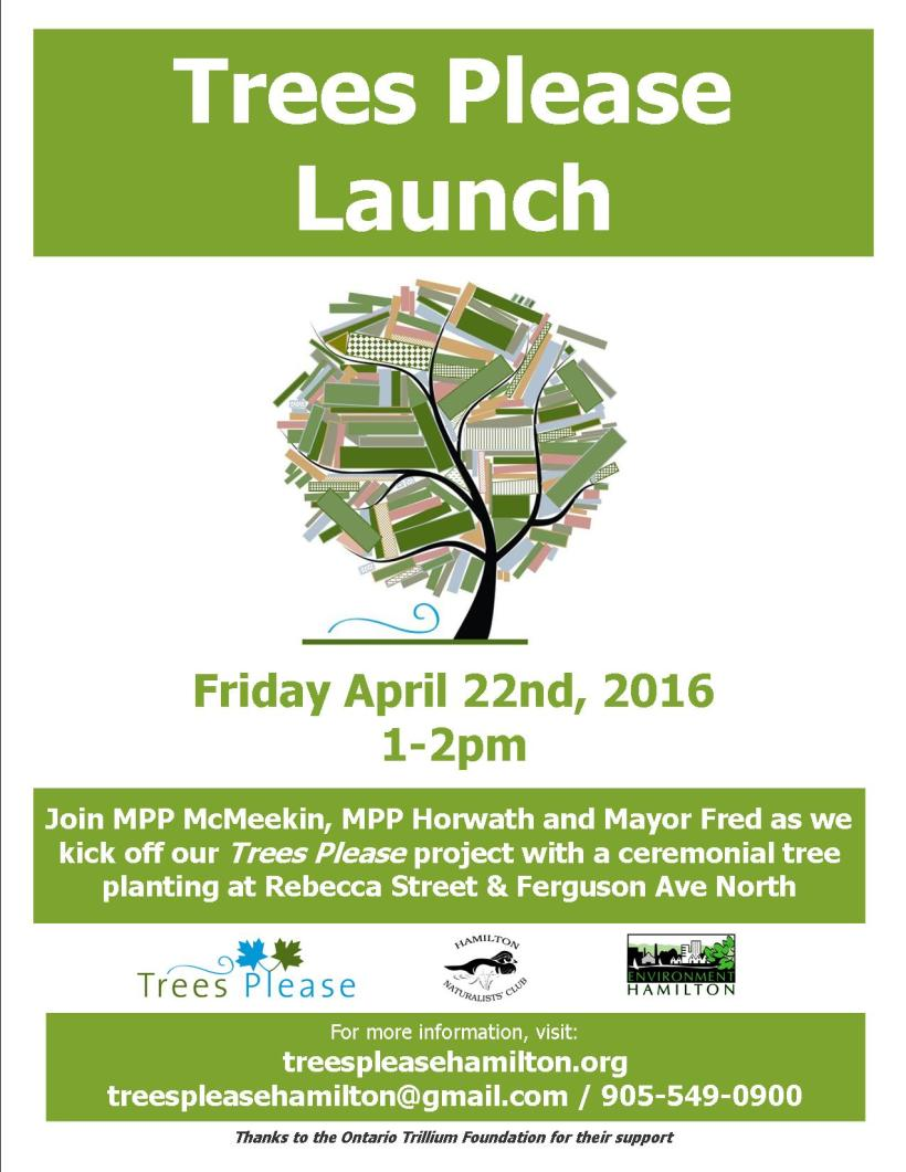 TP Project Launch 2016