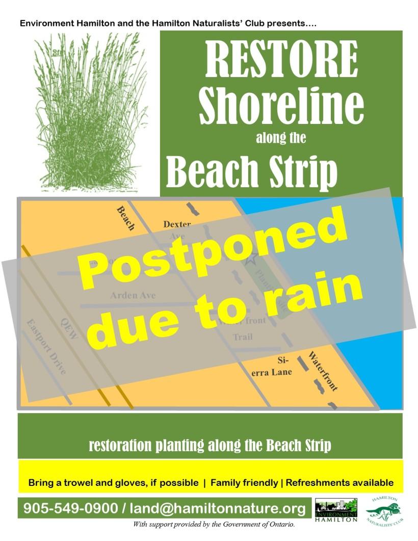 V2 Beach Strip POSTPONED planting