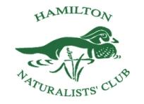 Wood-Duck-Logo