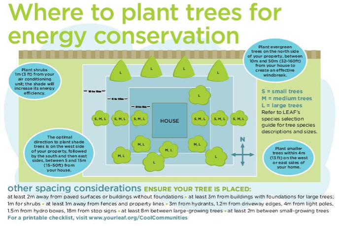 where-to-plant-trees-for-energy-conservation-from-www-yourleaf-org