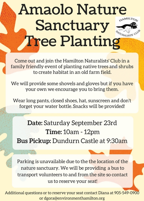 Amaolo Nature Sanctuary Tree Planting