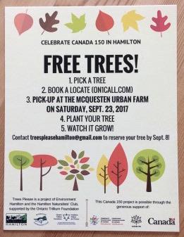 Free tree flyer .jpg