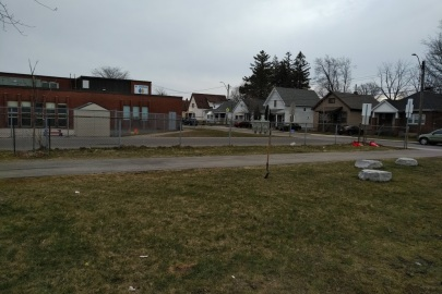 Photos of St Peter and Paul's Catholic Elementary School planting site