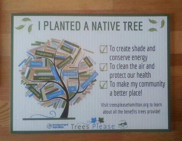 I planted a native tree