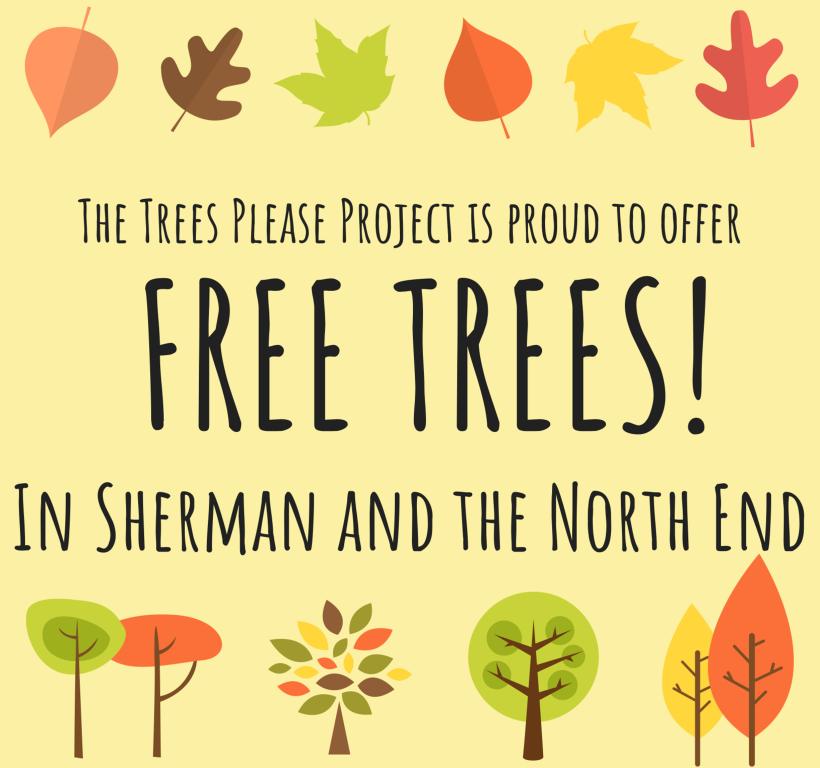 Free Trees Header